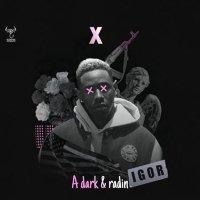 A Dark & Radin - 'X'