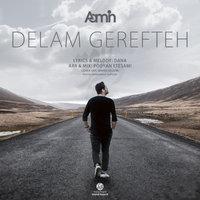 AaMin - 'Delam Gerefteh'