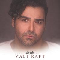AaMin - 'Vali Raft'
