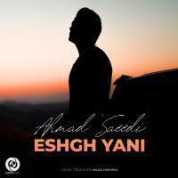 Ahmad Saeedi - 'Eshgh Yani'