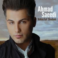 Ahmad Saeedi - 'Tahamol Kon'