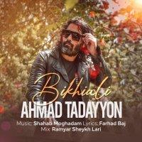 Ahmad Tadayyon - 'Bikhiali'
