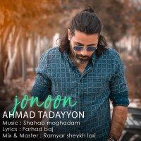 Ahmad Tadayyon - 'Jonoon'