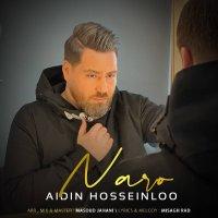 Aidin Hosseinloo - 'Naro'