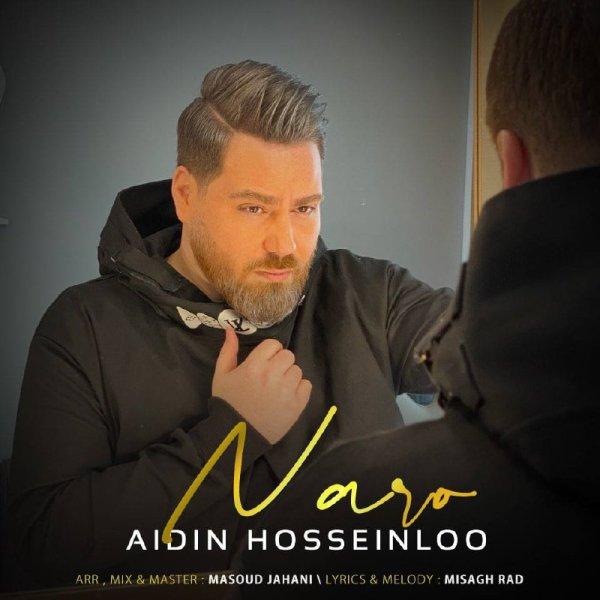 Aidin Hosseinloo - Naro