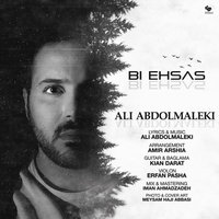 Ali Abdolmaleki - 'Bi Ehsas'