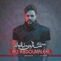 Ali Abdolmaleki - 'Setareye Donbaleh Dar'