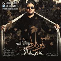 Ali Abdolmaleki - 'Too Baroon'