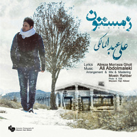 Ali Abdolmaleki - 'Zemestoon'