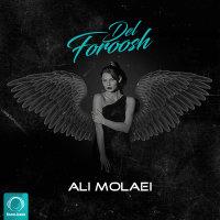 Ali Molaei - 'Delforoosh'