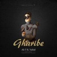 Ali T & Vahid SP - 'Gharibe'
