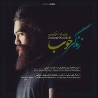 Ali Zand Vakili - 'Zendegie Khoob'