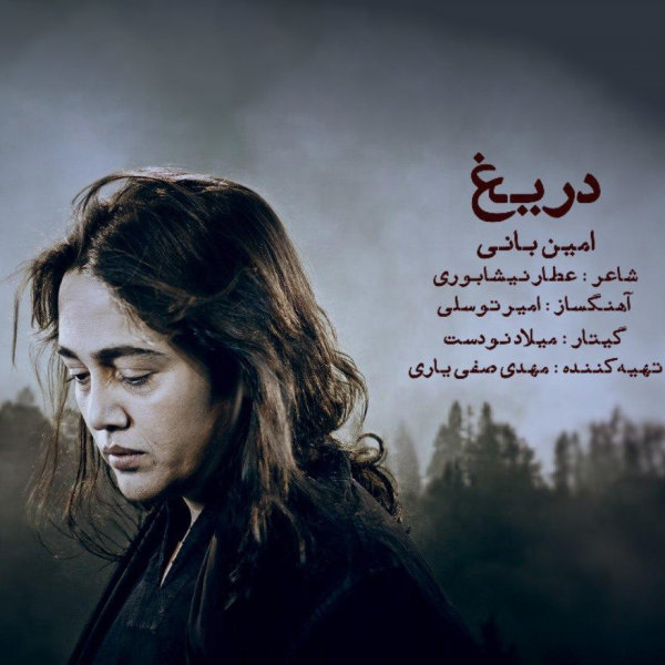 Amin Bani - Darigh Song'
