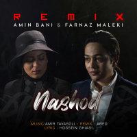 Amin Bani & Farnaz Maleki - 'Nashod (Remix)'