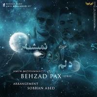Amin Mohammadi - 'Delam Aroom Nemishe (Ft Behzad Pax)'