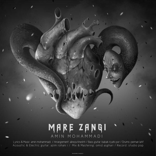 Amin Mohammadi - 'Mare Zangi'