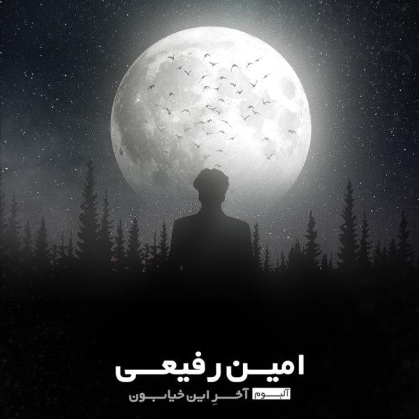 Amin Rafiee - Man Bayad Chikar Mikardam