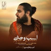 Amir Azimi - 'Asbe Vahshi'