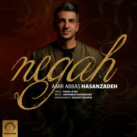 Amirabbas Hasanzadeh - 'Negah'
