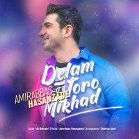 Amirabbas Hasanzadeh - 'Delam Toro Mikhad'