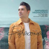 Amirabbas Hasanzadeh - 'Pashimoonam'
