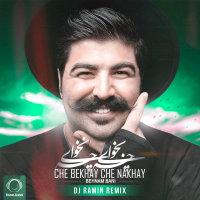 Behnam Bani - 'Che Bekhay Che Nakhay (DeeJay Ramin Remix)'