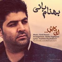Behnam Bani - 'Ey Kash'