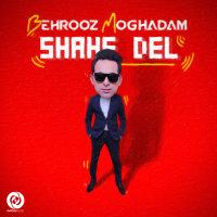 Behrooz Moghadam - 'Shahe Del'