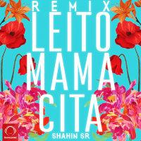 Behzad Leito - 'Mamacita (Shahin SR Remix)'