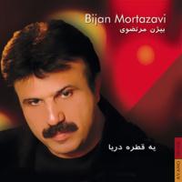 Bijan Mortazavi - 'Lavand'
