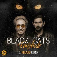 Black Cats - 'Emshab (Remix)'