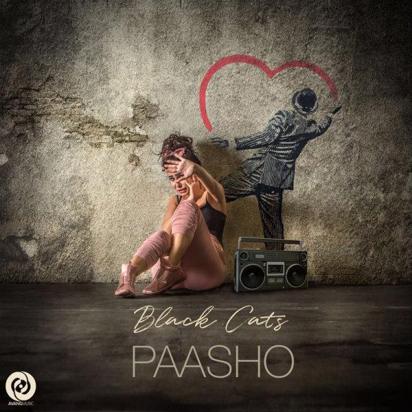 Black Cats - 'Paasho'