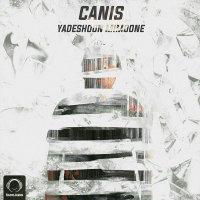 Canis - 'Yadeshoon Mimoone'