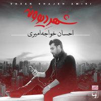 Ehsan Khajehamiri - 'Sahneh'