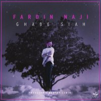 Fardin Naji - 'Ghabe Siah'