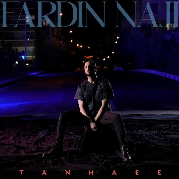 Fardin Naji - Tanhaei Song