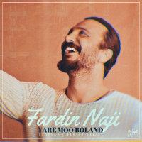 Fardin Naji - 'Yare Mo Boland'