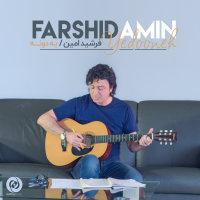 Farshid Amin - 'Yedooneh'