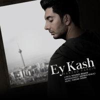 Farzad Farzin - 'Ey Kash'
