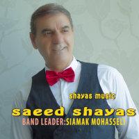 Saeed Shayas - 'Party 1'