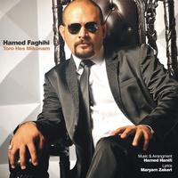 Hamed Faghihi - 'Toro Hess Mikonam'