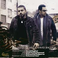 Hamed Fard & Navid Bagheri - 'Javooni'