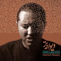 Hamed Nikpay - 'Rosva'