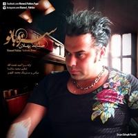 Hamed Pahlan - 'Sabze Banoo'