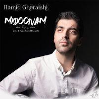 Hamid Ghoraishi - 'Midoonam'