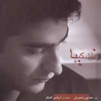 Homayoun Shajarian - 'Raghse Choob'