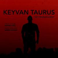 Keyvan Taurus - 'Key Barmigardi'