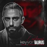 Keyvan Taurus - 'Lajbazi'