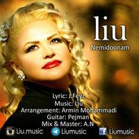 Liu - 'Nemidoonam'