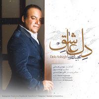 Majid Reza - 'Dele Ashegh'